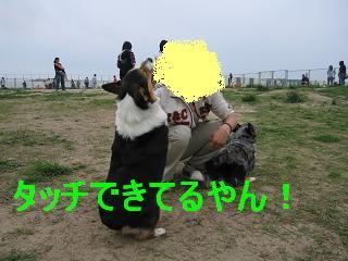 コピー ~ 画像 080