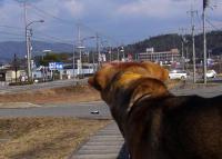 sanpo20070128-4.jpg