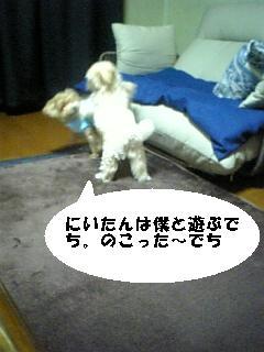 080120_220447.jpg