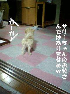 080125_194533.jpg