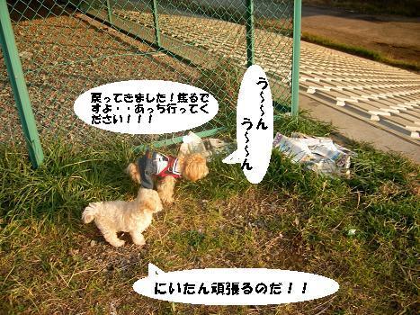 UNI_0221.jpg