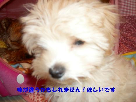 UNI_0333.jpg