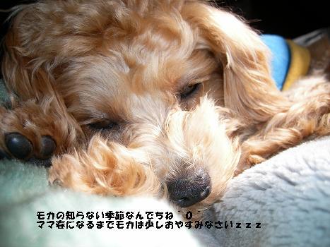 UNI_0552.jpg