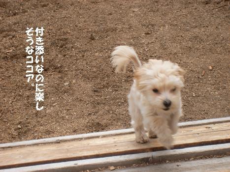 UNI_0635.jpg