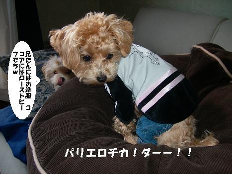 UNI_0673.jpg