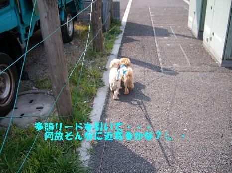 UNI_0712.jpg