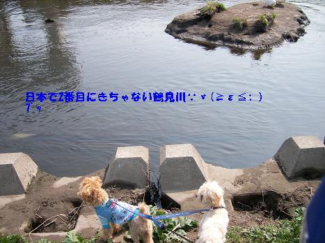 UNI_0719.jpg