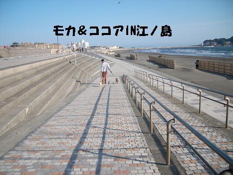 UNI_0752.jpg