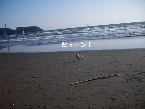 UNI_0757.jpg