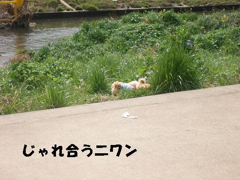 UNI_0833.jpg