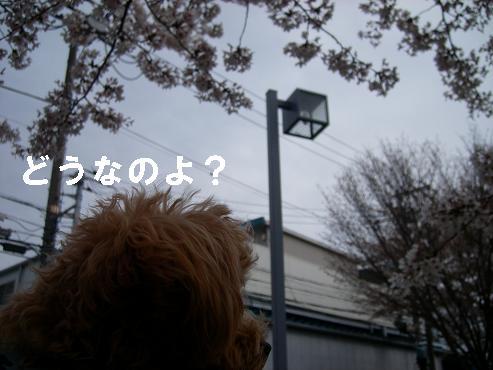UNI_0859.jpg
