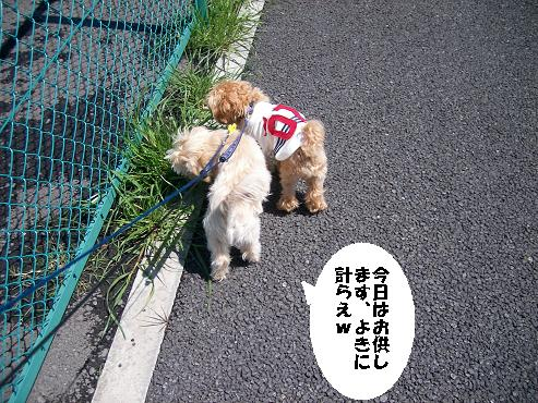 UNI_0924.jpg