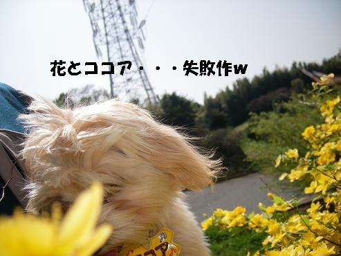 UNI_0967.jpg