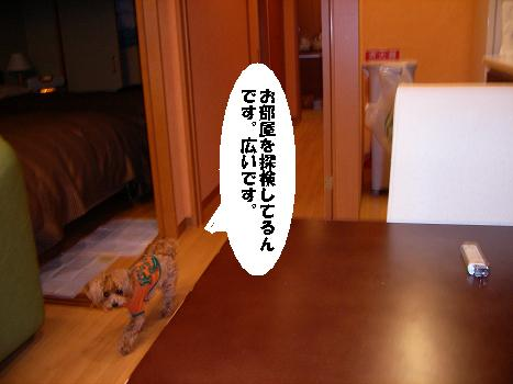 UNI_1166.jpg