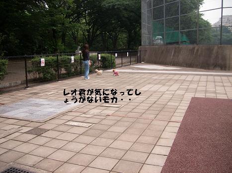UNI_1425.jpg