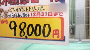 2008123116430000.jpg