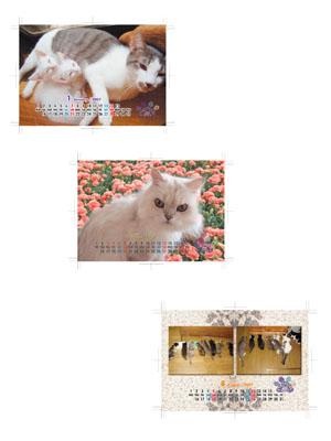 CATNAPオリジナルカレンダー(猫
