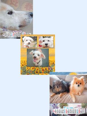 CATNAPオリジナルカレンダー(犬)