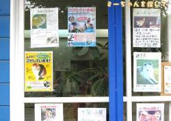 ミーちゃんのポスターを貼ってもらっていた宮代町にある動物病院の分院