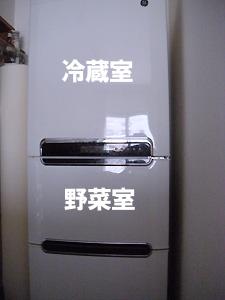 20080827_4.jpg