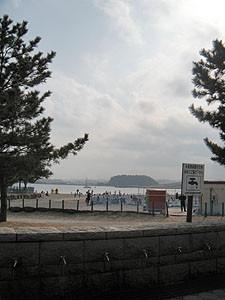 20090215_1.jpg