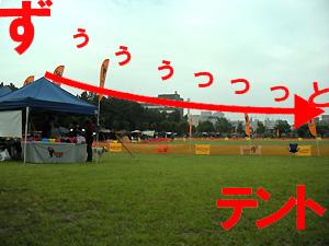 20090712_9.jpg
