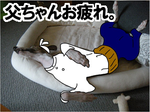 20090828_1.jpg