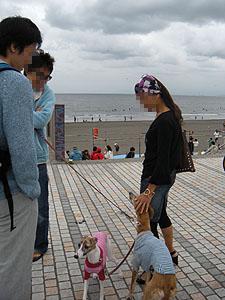 2009516_1.jpg