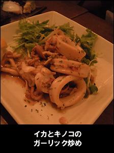 2009912_32.jpg