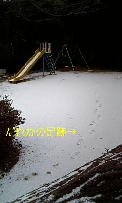 20090124093941