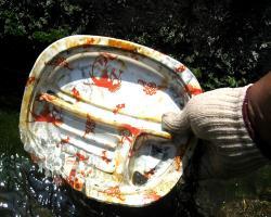 埋もれていた弁当の容器