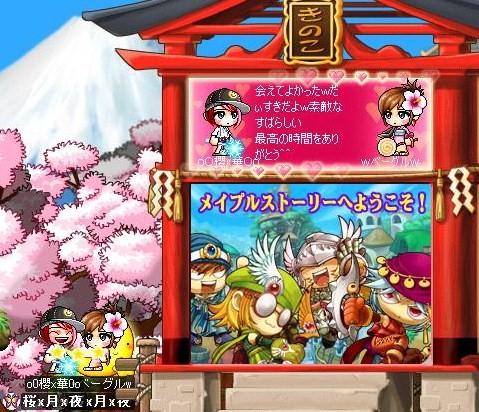 Maple0010_20080528013321.jpg
