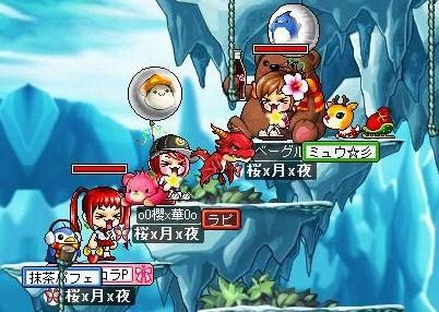 Maple0025_20080527145023.jpg