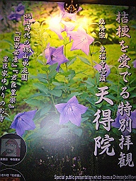 P1080751_256.jpg
