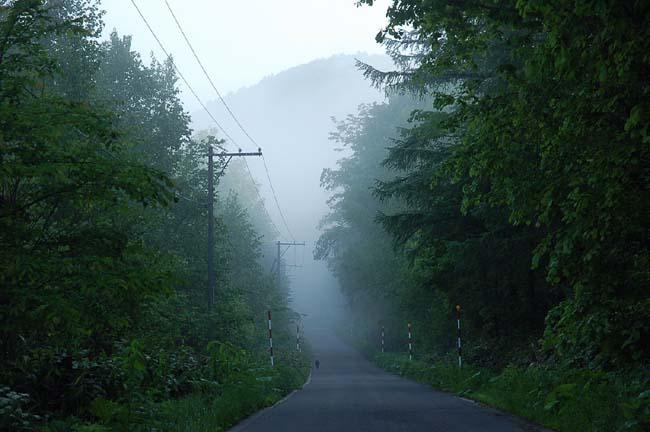 6.10霧の朝 (7)