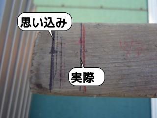 20091106_220107.jpg