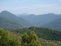 西吉野柿山から見た大峰山