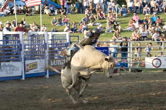 Marysville Rodeo, Bull Riding_DSC0440-5.30.09 (6)