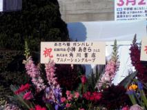 らき☆すたin武道館1