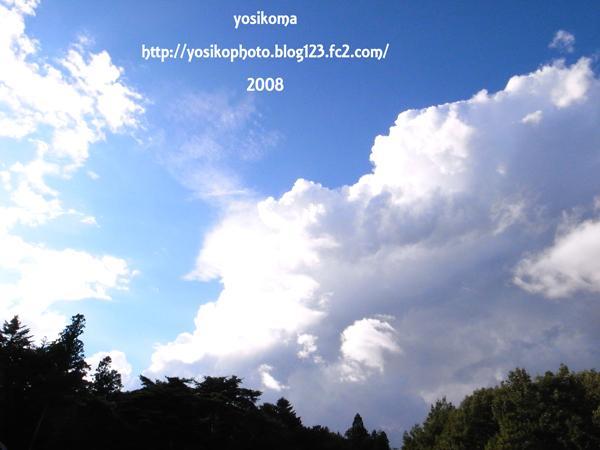 夏空--y-003