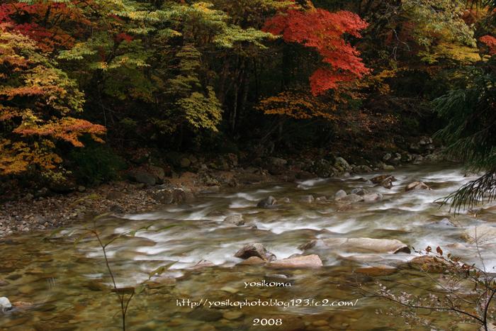 赤沢自然2