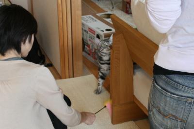 121_20081011163607.jpg