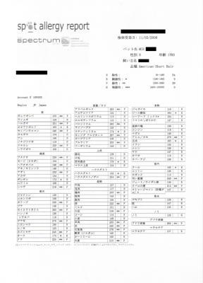 CCF20081227_00000のコピー_1