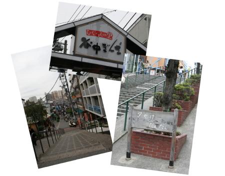 9-29-3_1.jpg