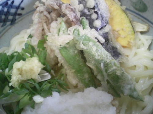 野菜天ぶっかけ(冷)