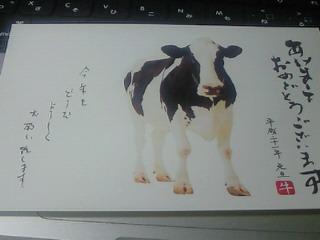NEC_0982.jpg