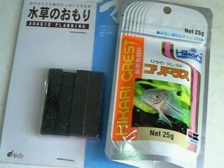 NEC_1685.jpg