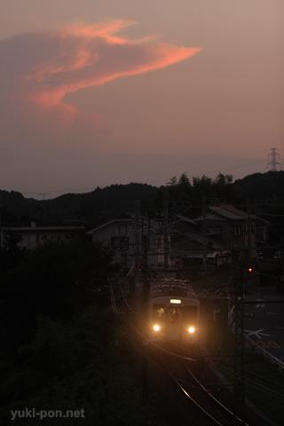 119系@東上~野田城