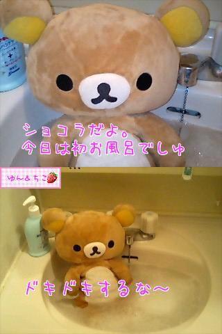 ちこちゃん日記特別編★ショコラ兄ちゃんの入浴★-1