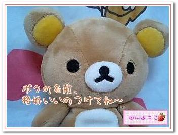 ちこちゃん日記特別編★ちっちゃなリラちゃんがやってきた★-3